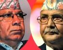 नेपाल पक्षको अडान : समान अधिकारसहितको एकता_img